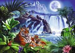 Tiger Waterfall - image 2 - Click to Zoom