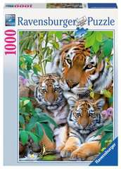 Tiger Family - image 2 - Click to Zoom
