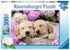 Süße Hunde im Körbchen Puzzle;Kinderpuzzle - Ravensburger
