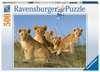 Löwen Babys Puzzle;Erwachsenenpuzzle - Ravensburger