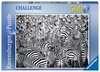 Groupe de zèbres Puzzles;Puzzles pour adultes - Ravensburger
