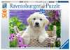 Sweet Golden Retriever, 500pc Puslespil;Puslespil for voksne - Ravensburger