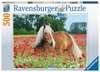 Paard tussen de klaprozen Puzzels;Puzzels voor volwassenen - Ravensburger