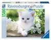Puzzle 1500 p - Chaton blanc Puzzle;Puzzle adulte - Ravensburger
