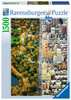 Divided City New York, 1500pc Puzzles;Adult Puzzles - Ravensburger