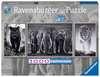 Panter, Elefanten, Löwe Puzzle;Erwachsenenpuzzle - Ravensburger