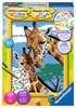 Giraffen Hobby;Schilderen op nummer - Ravensburger