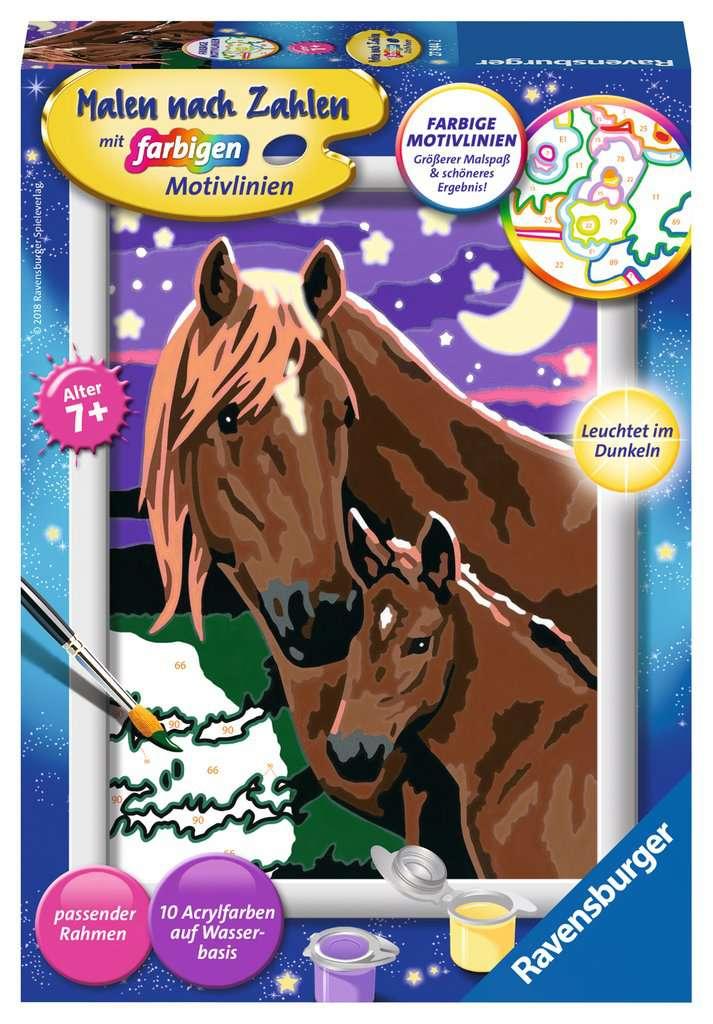 pferde  malen nach zahlen  malen und basteln  produkte