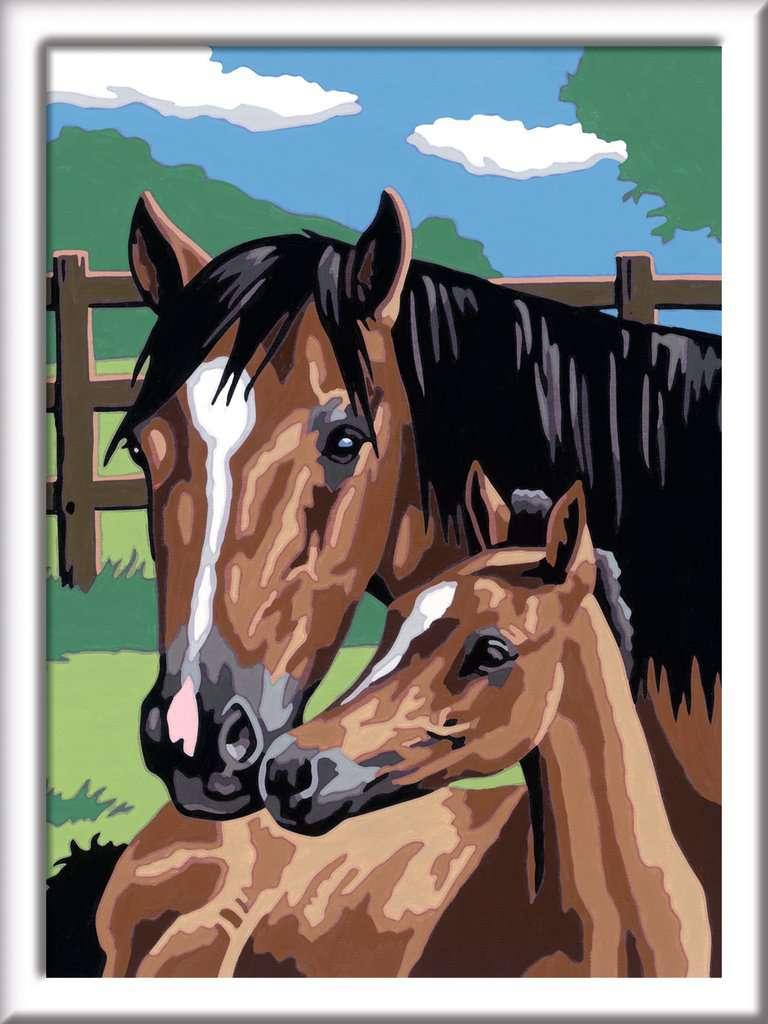 Pferd Mit Fohlen Malen Nach Zahlen Malen Und Basteln Produkte