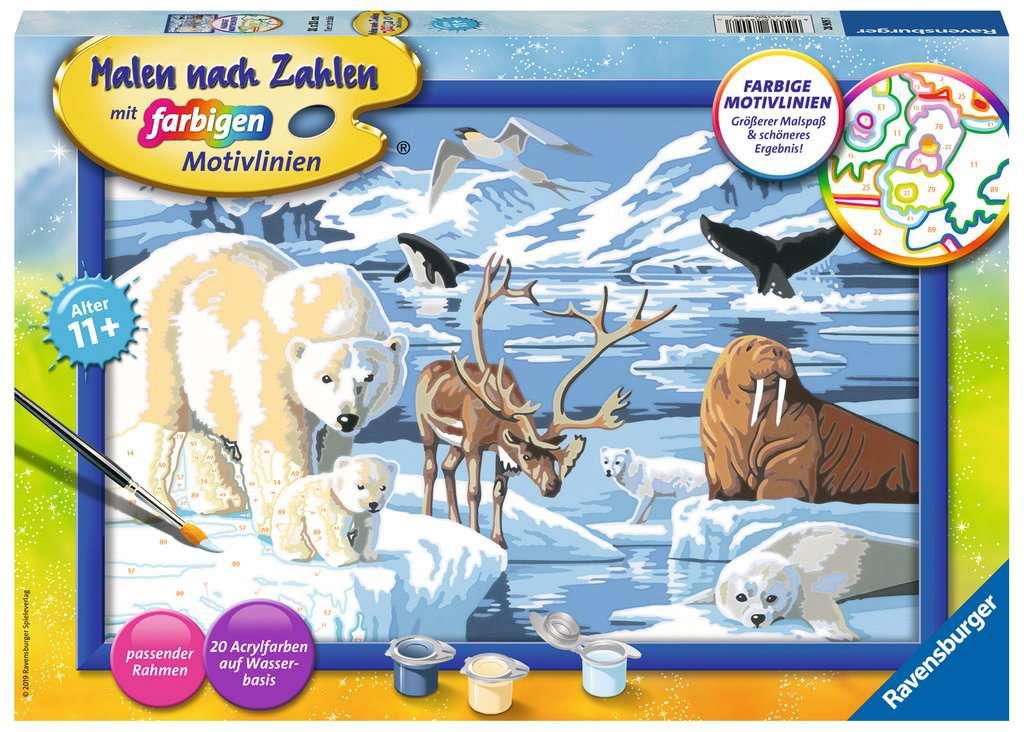 Tiere Der Arktis