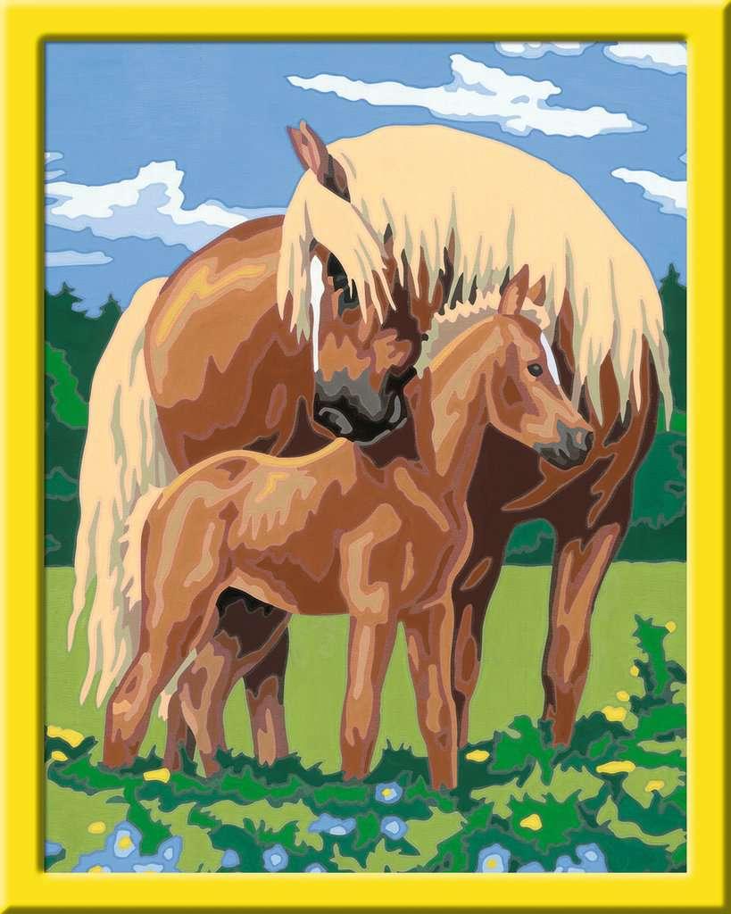 liebevolle pferde  malen nach zahlen  malen und basteln
