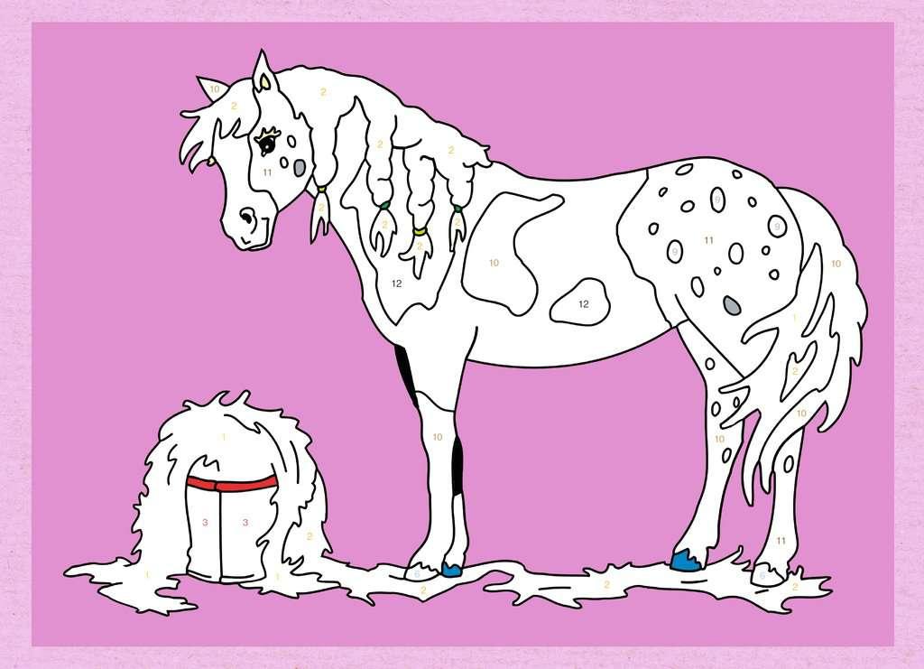 Malen Nach Zahlen Pferde Und Ponys