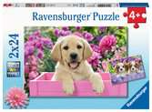 Me and my pal Jigsaw Puzzles;Children s Puzzles - Ravensburger