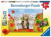 Puzzles 2x12 p - La découverte des chats Puzzle;Puzzle enfant - Ravensburger