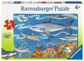 Sea of Sharks Jigsaw Puzzles;Children s Puzzles - Ravensburger