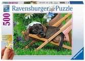 Schattige teckel Puzzels;Puzzels voor volwassenen - Ravensburger