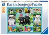 Cute Puppies, 500pc Puzzles;Adult Puzzles - Ravensburger