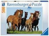 Kudde paarden Puzzels;Puzzels voor volwassenen - Ravensburger