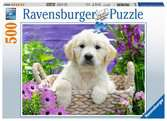 Puzzle 500 p - Doux Golden Retriever Puzzle;Puzzle adulte - Ravensburger
