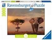 Elefant in Masai Mara National Park Puzzle;Erwachsenenpuzzle - Ravensburger