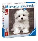 Cachorro maltés Puzzles;Puzzle Adultos - Ravensburger