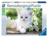 BIAŁY KOTEK 1500EL Puzzle;Puzzle dla dorosłych - Ravensburger