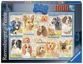Trouwe honden / Portraits de chiens Puzzels;Puzzels voor volwassenen - Ravensburger