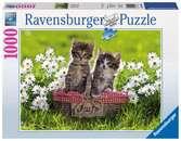 KOCI PIKNIK 1000 EL Puzzle;Puzzle dla dorosłych - Ravensburger