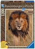 Löwe in der Steppe Puzzle;Erwachsenenpuzzle - Ravensburger