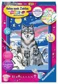 Süße Wolfsfamilie Malen und Basteln;Malen nach Zahlen - Ravensburger