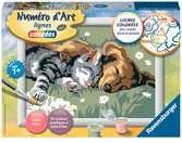 Numéro d art - petit - Douce sieste Loisirs créatifs;Peinture - Numéro d'Art - Ravensburger