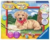 Schattige labrador Hobby;Schilderen op nummer - Ravensburger