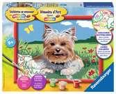 Kleine Yorkshire terrier Hobby;Schilderen op nummer - Ravensburger
