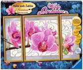 Wilde orchidee Hobby;Schilderen op nummer - Ravensburger