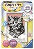 Numéro d art - mini - Joli chaton gris Loisirs créatifs;Peinture - Numéro d'Art - Ravensburger
