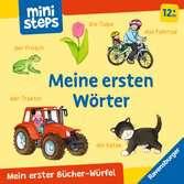Mein erster Bücher-Würfel: Meine ersten Wörter (Bücher-Set) Kinderbücher;Babybücher und Pappbilderbücher - Ravensburger