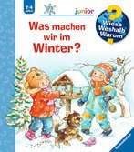 Why? Why? Why? Junior (Vol. 58) What Do We Do in Winter?