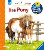 Why? Why? Why? Junior (Vol. 20): The Pony