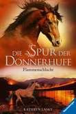 Die Spur der Donnerhufe, Band 1: Flammenschlucht Bücher;Kinderbücher - Ravensburger