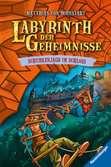 Labyrinth der Geheimnisse, Band 5: Schurkenjagd im Schloss Kinderbücher;Kinderliteratur - Ravensburger