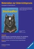 Materialien zur Unterrichtspraxis - John Reynolds Gardiner: Steinadler Bücher;Materialien zur Unterrichtspraxis - Ravensburger