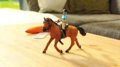 tiptoi® Freizeit Reit-Set - Bild 10 - Klicken zum Vergößern