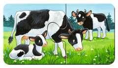 Familles d'animaux à la ferme - Image 3 - Cliquer pour agrandir