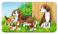 Familles d'animaux à la ferme - Image 4 - Cliquer pour agrandir