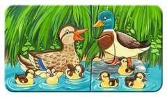 Familles d'animaux à la ferme - Image 9 - Cliquer pour agrandir