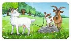 Familles d'animaux à la ferme - Image 10 - Cliquer pour agrandir