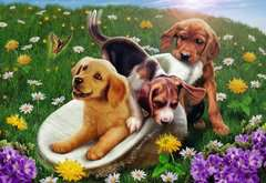 Frolicking Puppies - image 2 - Click to Zoom