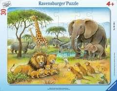 Afrikas Tierwelt - Bild 1 - Klicken zum Vergößern