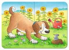 Niedliche Haustiere - Bild 3 - Klicken zum Vergößern