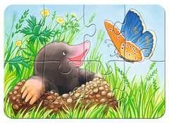 Süße Gartenbewohner - Bild 3 - Klicken zum Vergößern